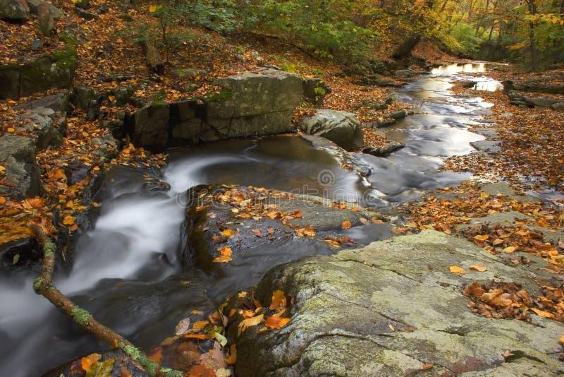 odrzutowiec jesieni zdjęcia stock