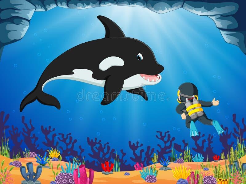 Odważny nurek patrzeje dużego delfinu pod błękitnym oceanem royalty ilustracja