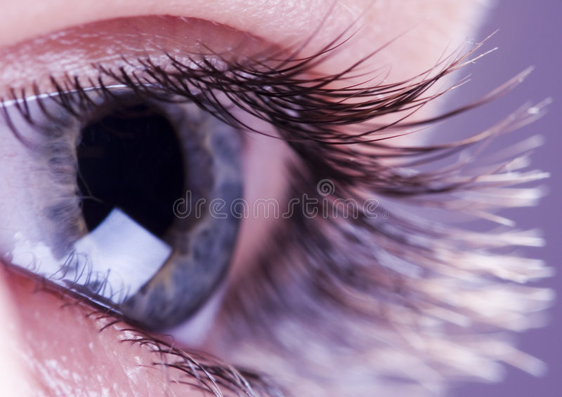 Download Oeil Images stock - Image: 1981234