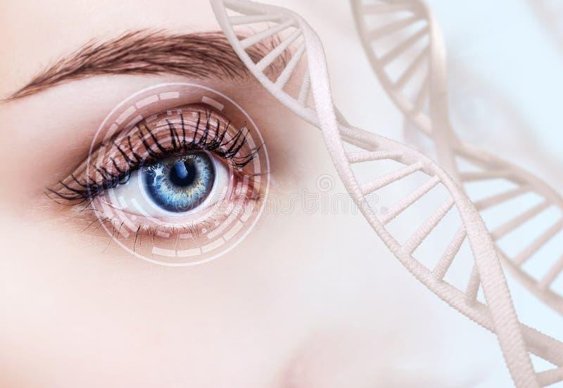 Oeil abstrait avec le cercle numérique et les chaînes d'ADN image libre de droits