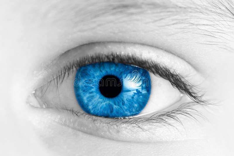 Oeil bleu d'enfant images stock