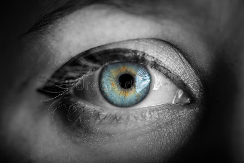 Oeil bleu d'iris photo stock