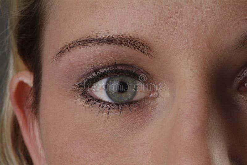 Oeil bleu de femme photographie stock libre de droits