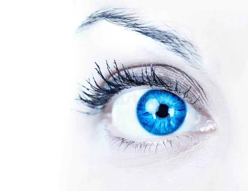 Oeil bleu de femme image stock