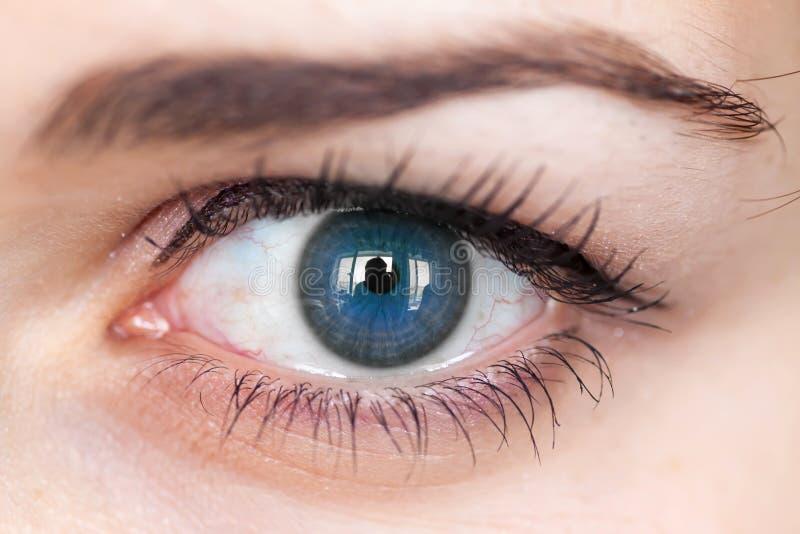 Oeil bleu humain. photos libres de droits