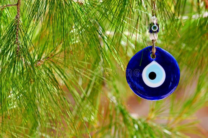Oeil bleu turc traditionnel d'amulette de l'oeil mauvais sur une branche de pin image libre de droits