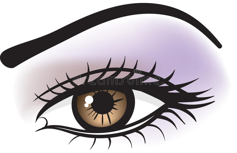 Oeil brun femelle illustration de vecteur
