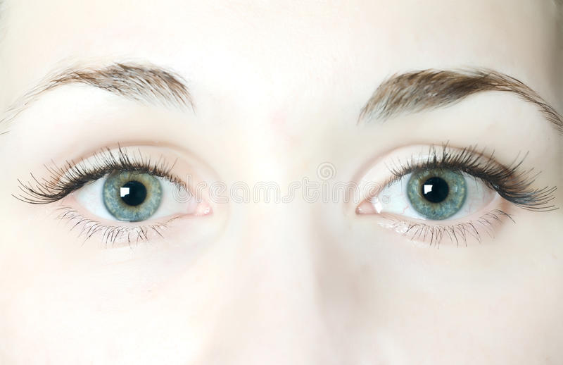 Oeil de femme photographie stock