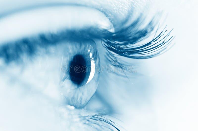 Oeil de femme images stock
