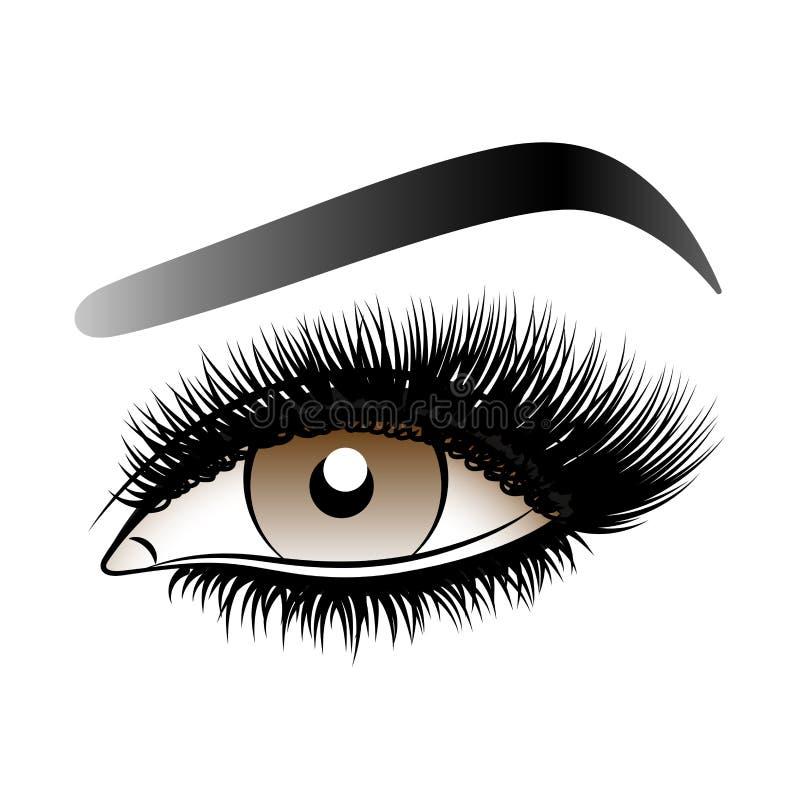 Oeil de femme de Brown avec de longues mèches fausses avec des sourcils illustration libre de droits