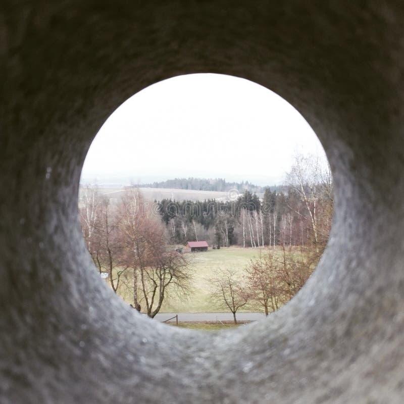 Oeil en nature photographie stock libre de droits