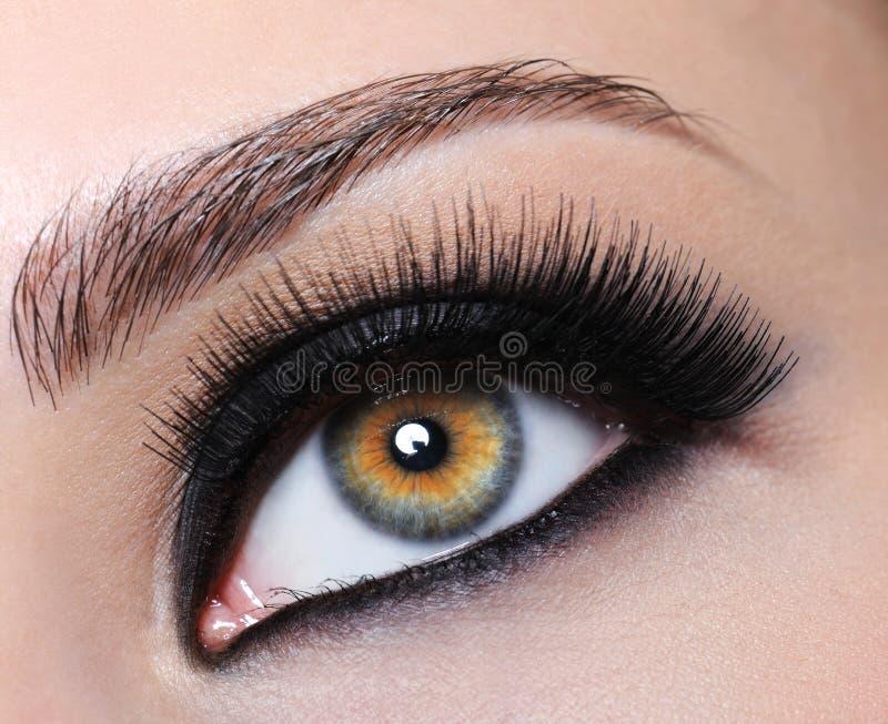 Oeil femelle avec de longs cils noirs images libres de droits