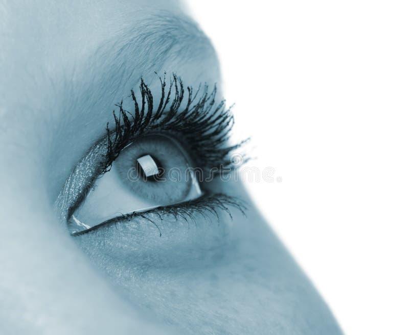 Oeil femelle - son bleu images libres de droits