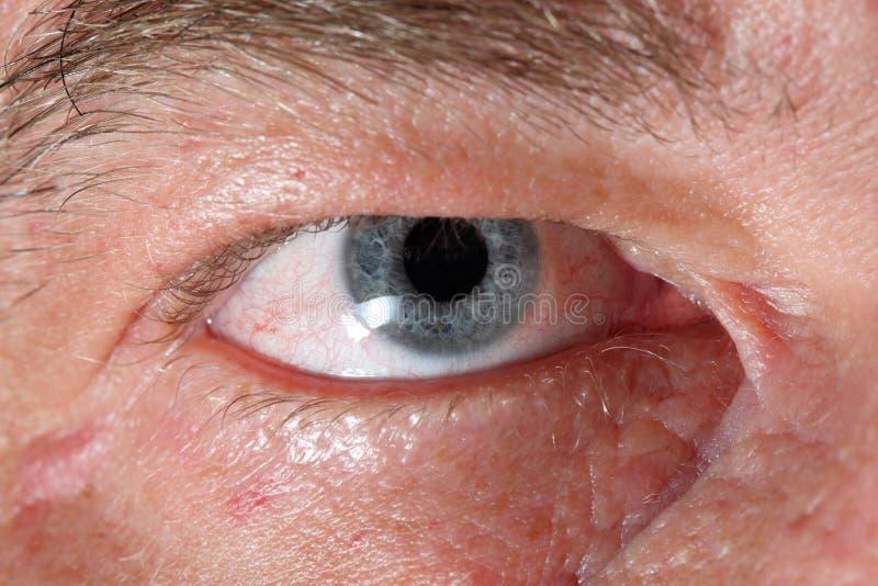 Oeil humain images libres de droits
