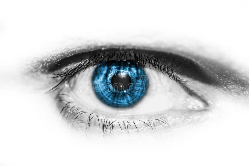 Oeil humain coloré en gros plan photos stock