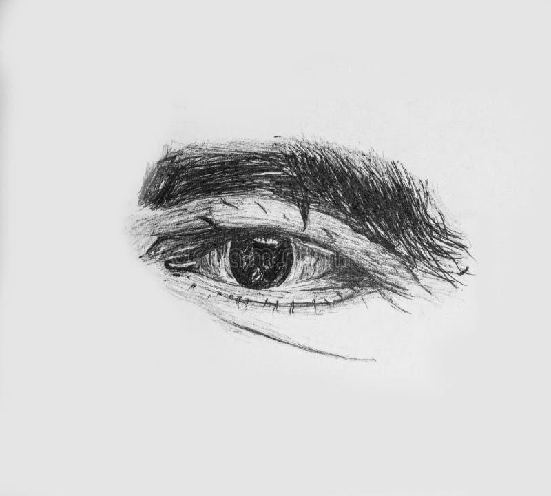 Oeil humain d'un vieil homme avec les sourcils épais - croquis détaillé de crayon illustration de vecteur