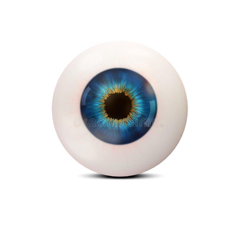 Oeil humain sur le fond blanc illustration de vecteur