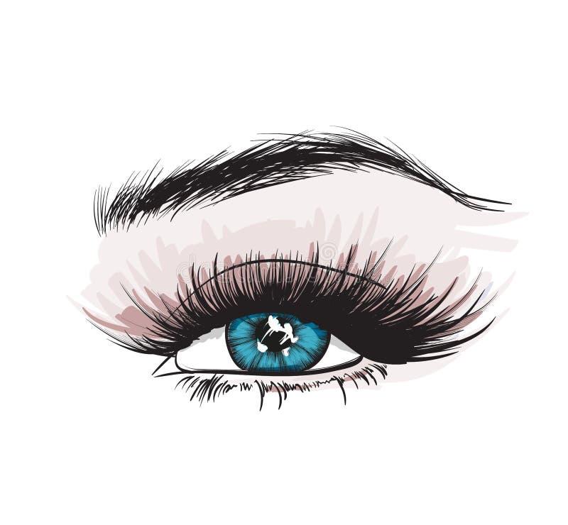 Oeil luxueux du ` s de femme avec les sourcils parfaitement formés et les pleines mèches illustration stock