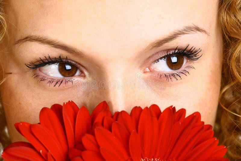 Oeil rouge de fleur photo stock