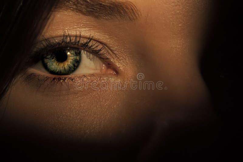 Oeil sur le visage femelle sur le fond d'ombre image libre de droits
