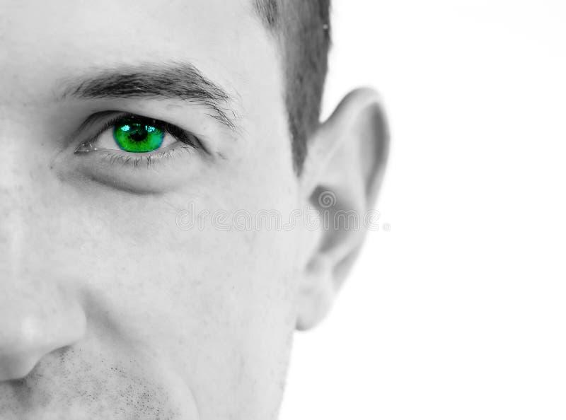 Oeil vert images stock