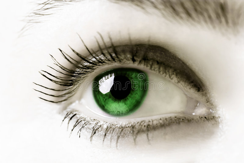 Oeil vert image stock