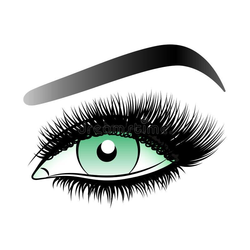 Oeil vert de femme avec de longues mèches fausses avec des sourcils illustration stock