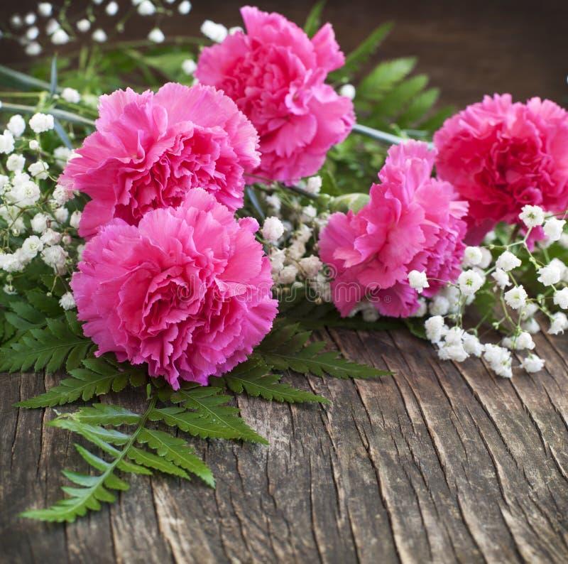 Oeillet rose sur le fond en bois photo libre de droits