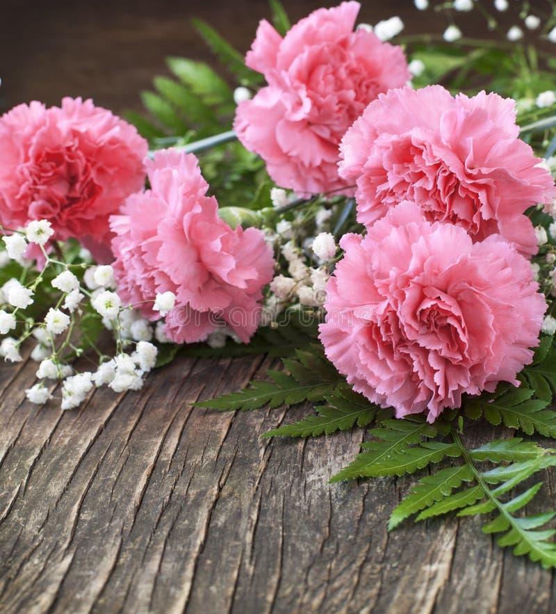 Oeillet rose sur le fond en bois images libres de droits