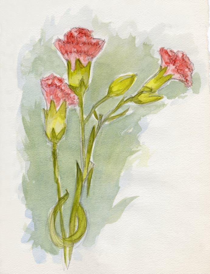 Oeillets roses illustration libre de droits