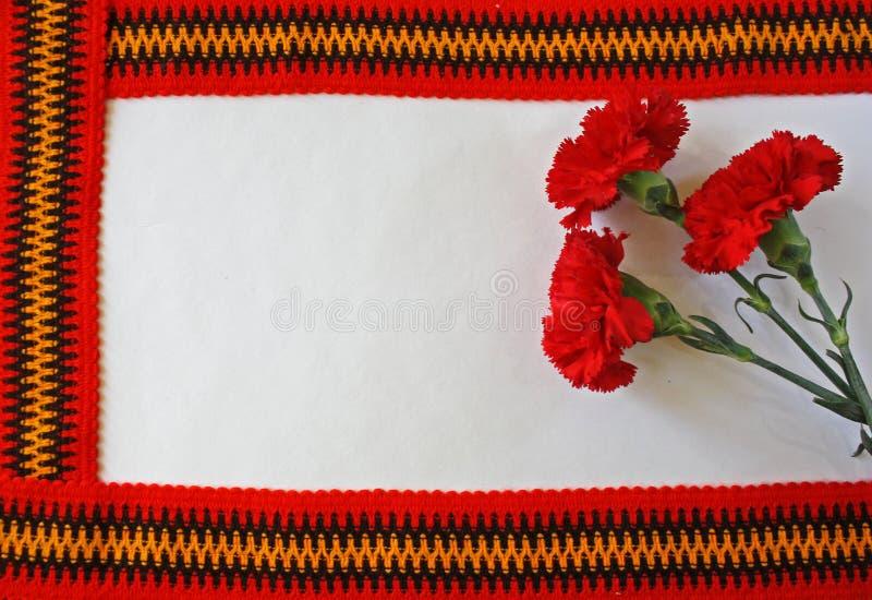 Oeillets rouges sur un fond blanc images stock