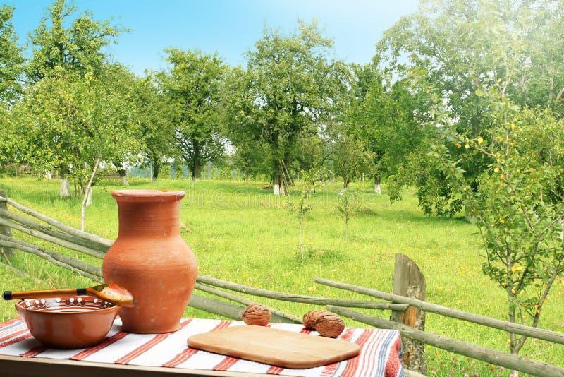 Oekraïens comfortabel de zomerlandschap met groene tuin en traditionele lijst met voedsel stock afbeelding