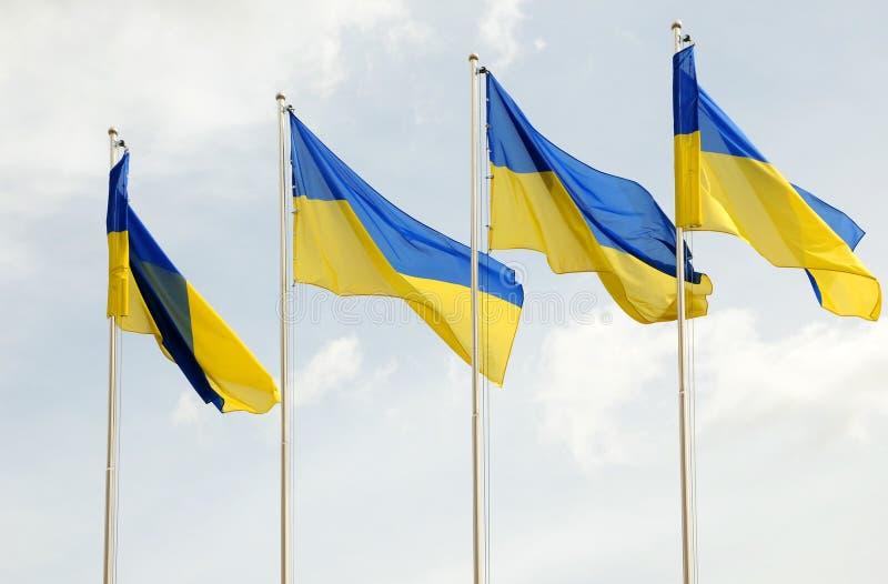 Oekraïense vlaggen in de wind op blauwe hemelachtergrond royalty-vrije stock foto's