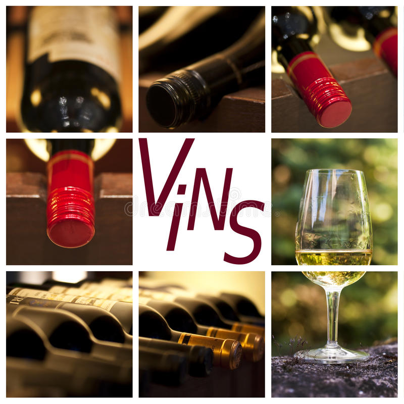 Free Oenology And Wine Concept Collage, Word Vins Royalty Free Stock Image - 69833836