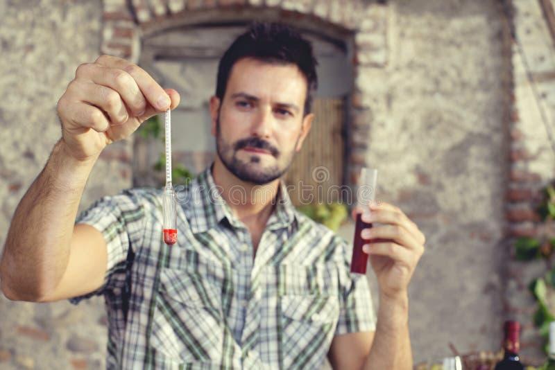 Oenology som mäter procentsatsen av socker av vinet arkivbilder