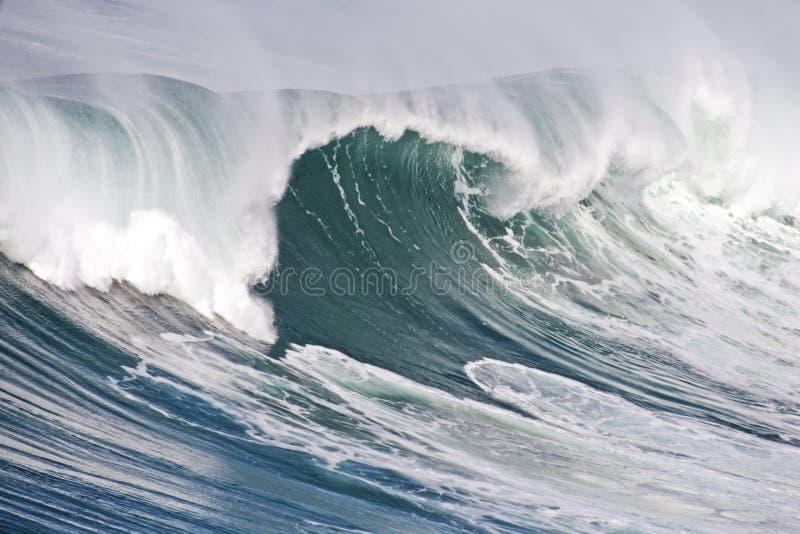 oerhörd oceanic portugal wave fotografering för bildbyråer