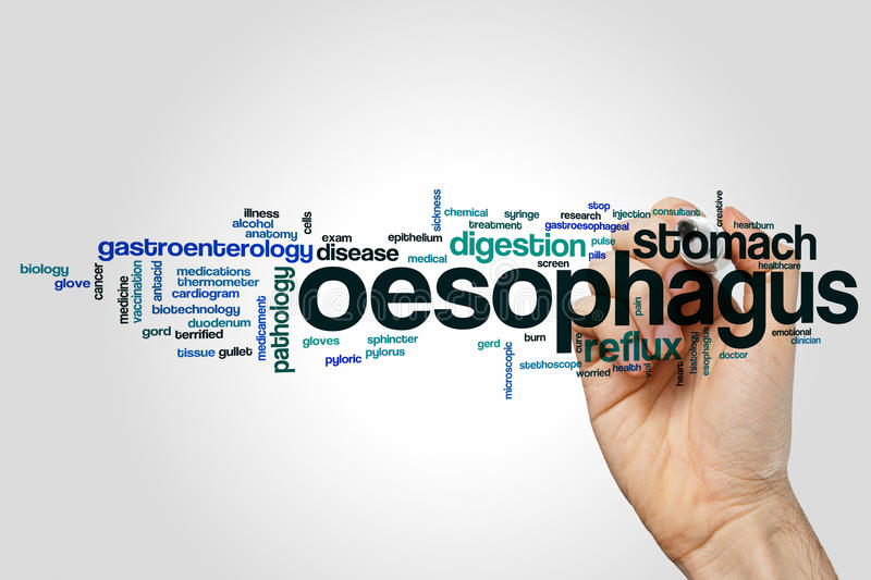 Oesophagus word cloud royalty free stock photo