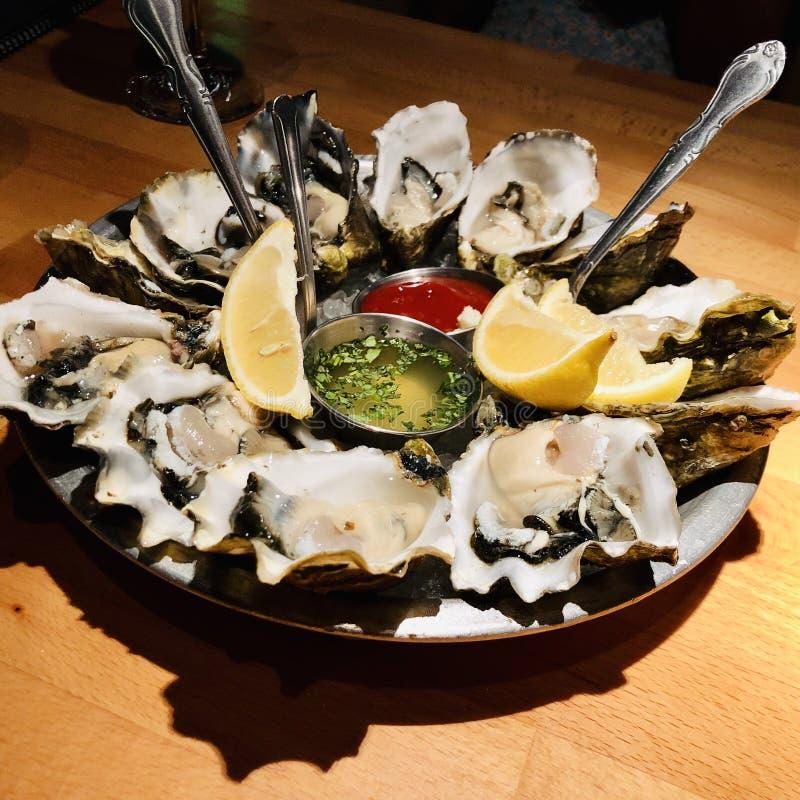 oester royalty-vrije stock afbeelding