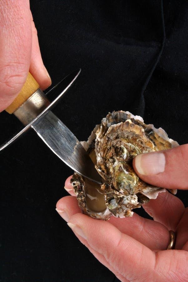 oester en mes stock fotografie