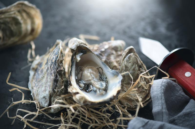 oester Verse oestersclose-up met mes op donkere achtergrond Oesterdiner in restaurant royalty-vrije stock afbeelding