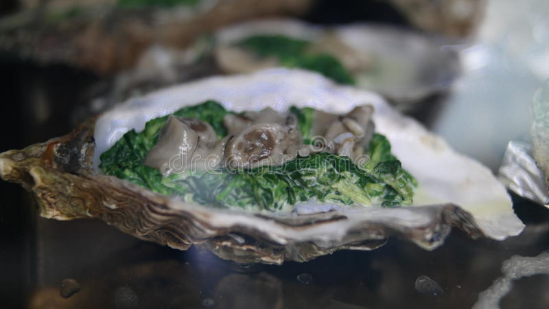 oesters stock foto