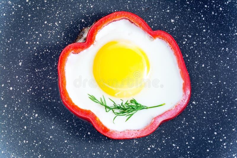 Oeuf au plat de petit déjeuner un brin d'aneth frais à l'intérieur du poivron rouge dans le plan rapproché de casserole image libre de droits