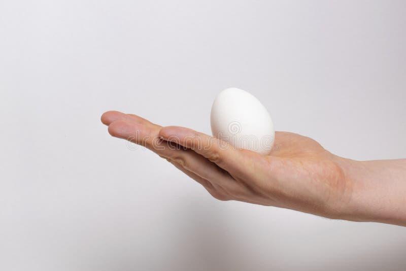 Oeuf blanc dans la paume sur un fond Peut être employé comme calibre pour colorer des oeufs de pâques photos stock