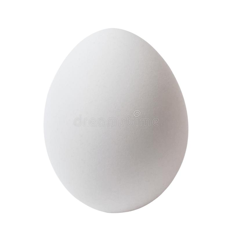 Oeuf blanc de poulet, d'isolement sur le fond blanc, image stock