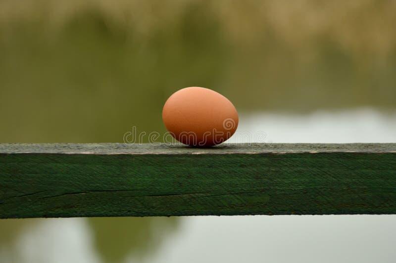 Oeuf brun simple sur le bloc en bois avec le fond de lac image stock