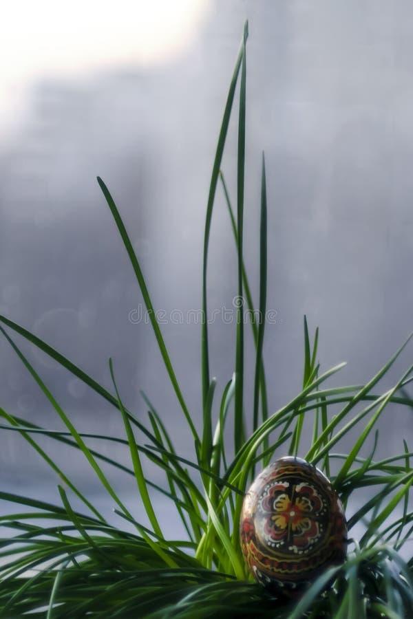 Oeuf de noir de Pâques avec un modèle fait main dans une herbe verte, usine image stock