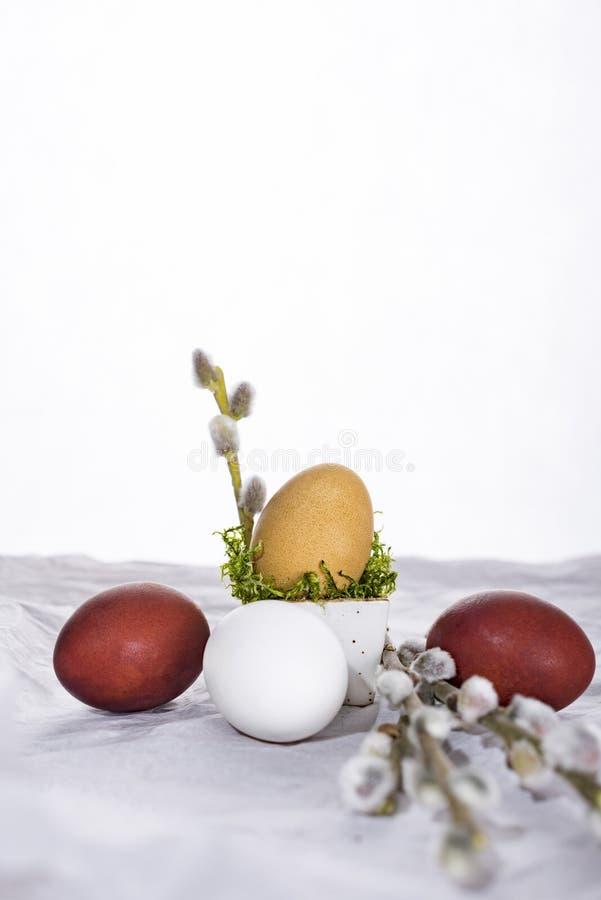 Oeuf de pâques avec les tulipes et la brindille de saule photographie stock libre de droits