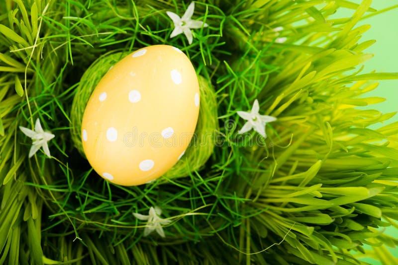 Oeuf de pâques coloré dans le nid photo stock