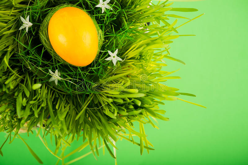 Oeuf de pâques coloré dans le nid photographie stock libre de droits