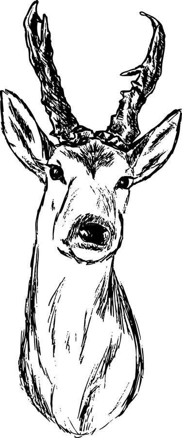 Oeuf de poisson-cerfs communs illustration de vecteur